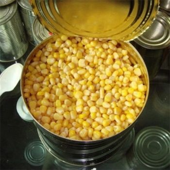 2125g New Crop Canned Sweet Corn