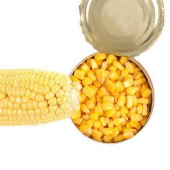 400g New Crop Canned Sweet Corn