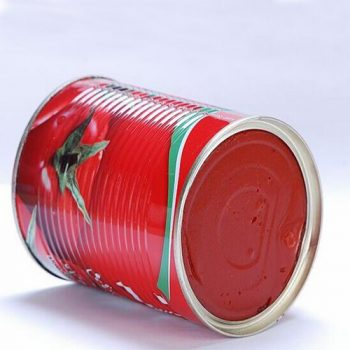 Wholesale High Quality 1000g Canned Tomato Paste
