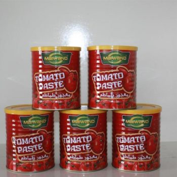 Wholesale High Quality 400g Canned Tomato Paste