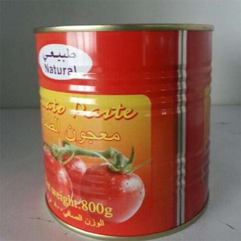 Wholesale High Quality 800g Canned Tomato Paste
